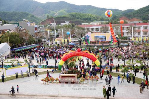Quảng Ninh: Khai mạc Lễ hội Trà hoa vàng