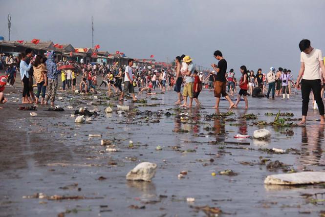 Hãy hành động để cùng giữ gìn môi trường biển!