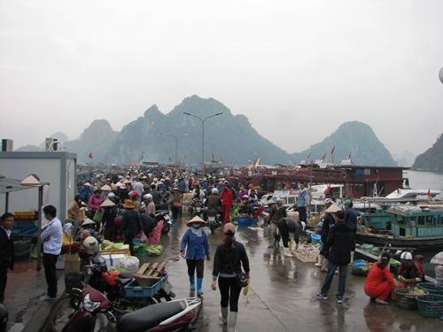 Hơn 2.000 du khách mắc kẹt ở Cô Tô được đưa vào đất liền