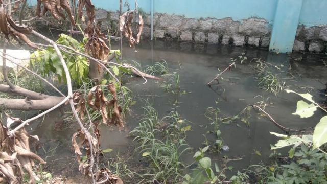 Phú Yên: Doanh nghiệp xả nước thải gây ô nhiễm nghiêm trọng