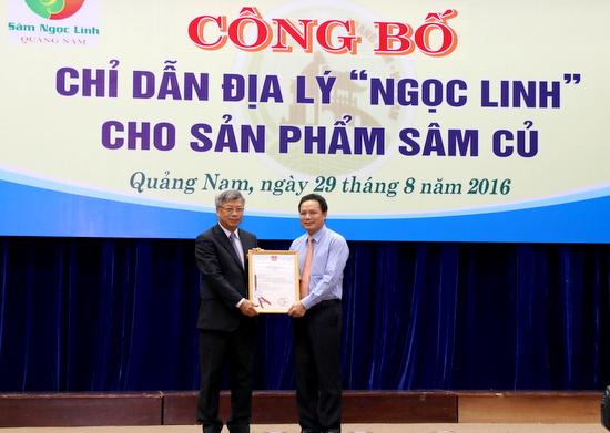 """Trao Giấy chứng nhận đăng ký chỉ dẫn địa lý """"Ngọc Linh"""" cho sản phẩm sâm củ của tỉnh Quảng Nam"""