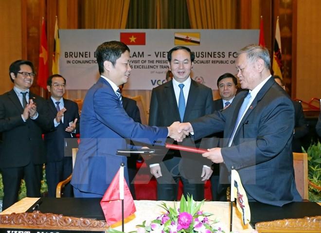 Chủ tịch nước Trần Đại Quang dự Diễn đàn doanh nghiệp Việt Nam - Brunei Darussalam