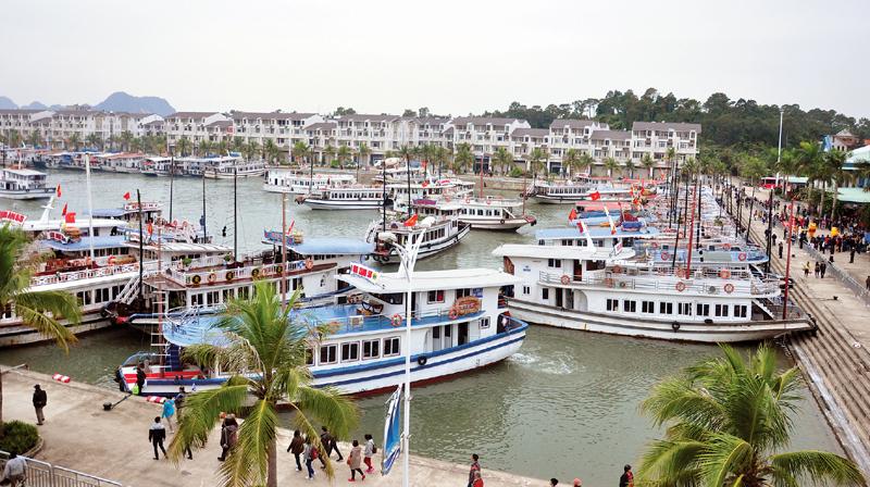 Cảng Tuần Châu chỉ được thu phí khi có ý kiến của UBND Quảng Ninh