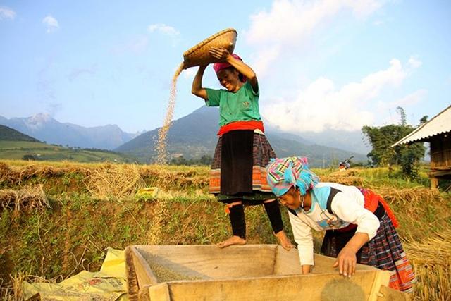 Phó Thủ tướng Trương Hòa Bình đồng ý Ủy ban Dân tộc xây dựng 3 đề án liên quan đến công tác xóa đói giảm nghèo