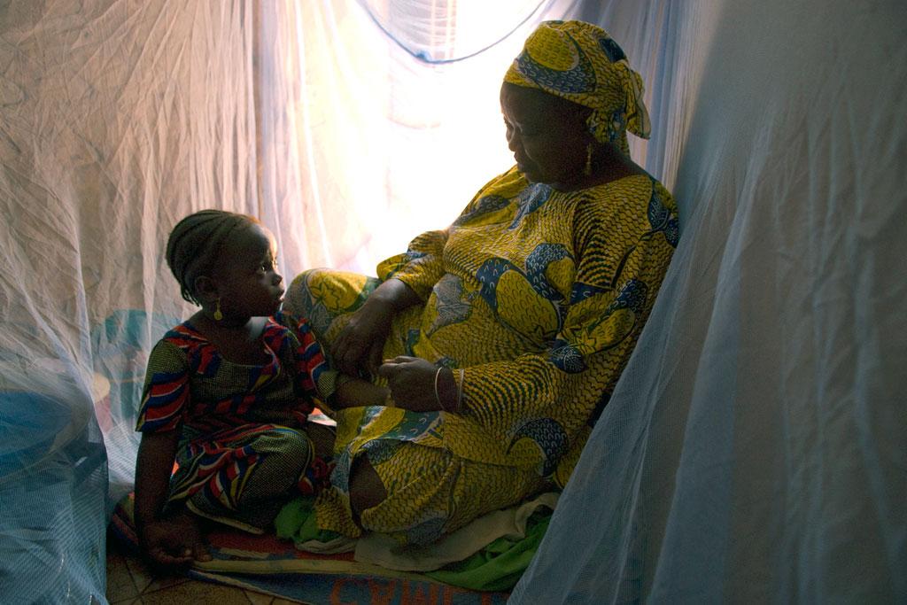 WHO: Thế giới cần tăng cường nỗ lực để đẩy lùi bệnh sốt rét