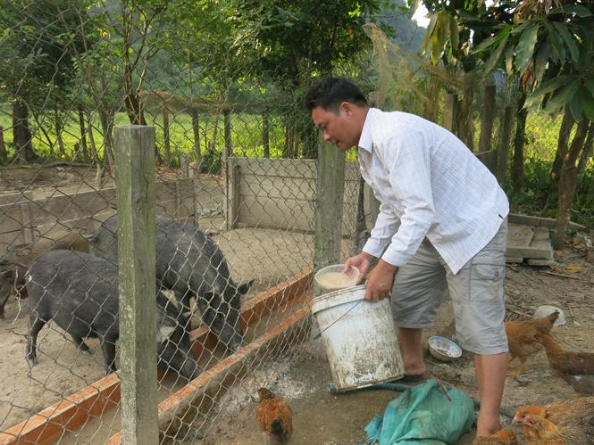 Quảng Bình: Nhiều giải pháp từ Chương trình 135 giúp người dân thoát nghèo