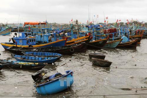 Tuyên truyền vận động ngư dân tuân thủ pháp luật, không xâm phạm vùng biển nước ngoài