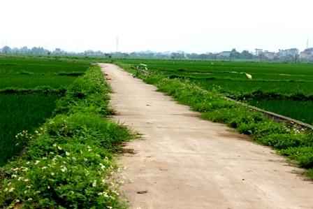 Vĩnh Phúc: Dự kiến đến hết năm 2016 có thêm 24-28 xã đạt chuẩn nông thôn mới