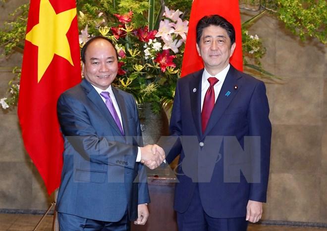 Coi trọng thúc đẩy quan hệ đối tác chiến lược sâu rộng Việt Nam - Nhật Bản