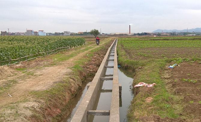 Bắc Giang đầu tư hơn 220 tỷ đồng xây dựng nông thôn mới