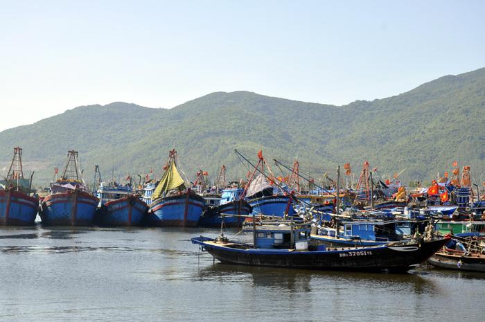 Kim ngạch xuất khẩu thủy sản giảm nhưng nhập khẩu tăng mạnh trong tháng 1/2017