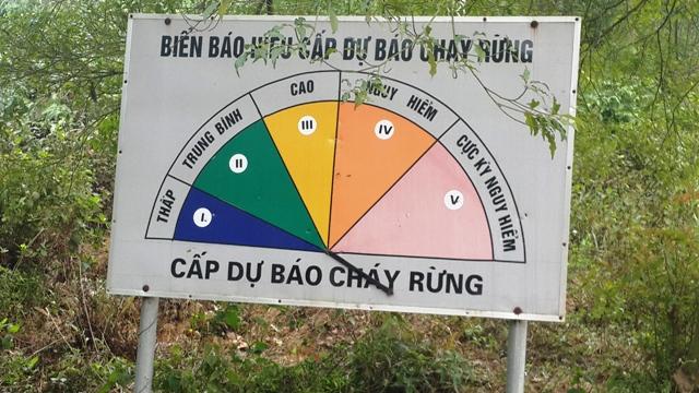 Tăng cường phòng chống cháy rừng trong các tháng cao điểm từ tháng 3 đến tháng 5/2017