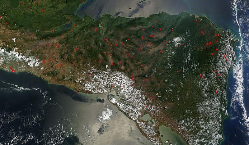 Honduras ghi nhận hàng chục đám cháy rừng mỗi tuần