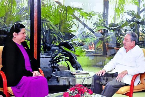 Chủ tịch Cuba Raúl Castro tiếp Phó Chủ tịch Quốc hội Tòng Thị Phóng