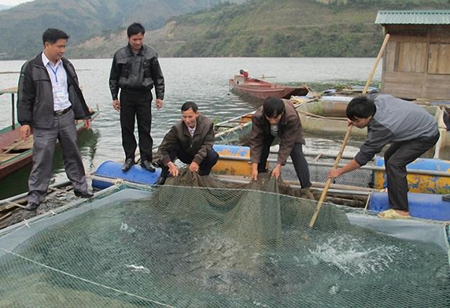 Huyện Quỳnh Nhai (Sơn La) xây dựng nông thôn mới