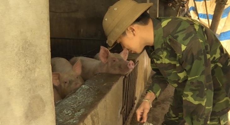 Chàng trai trẻ ở Hưng Yên với quyết tâm xây dưng mô hình chăn nuôi an toàn