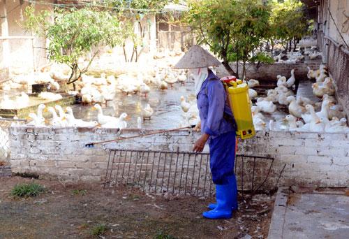 Xuất cấp hóa chất sát trùng cho Nam Định