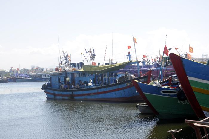 Quý I/2017 ước sản lượng khai thác thủy sản tăng 1,4% so với cùng kỳ năm trước