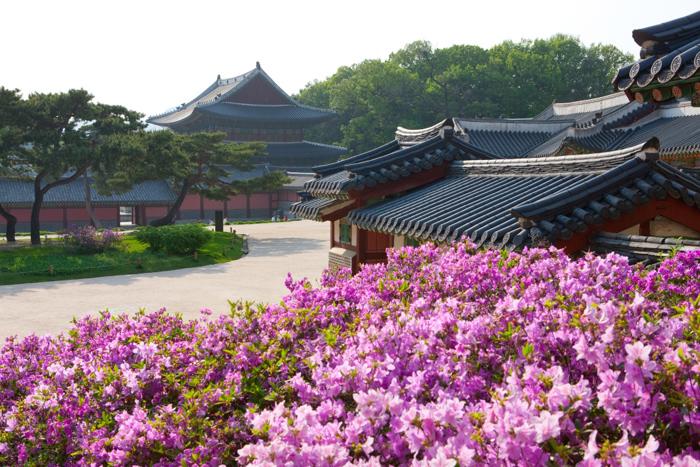 Quảng Ninh là một trong những thị trường lớn của du lịch Hàn Quốc