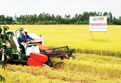 Con đường tái cấu trúc nông nghiệp Việt Nam (Bài 2: Động lực mới cho phát triển kinh tế nông nghiệp)