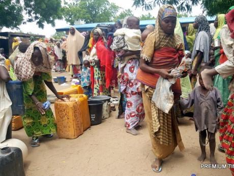 Liên hợp quốc phản đối Cameroon cưỡng ép hồi hương người tị nạn Nigieria