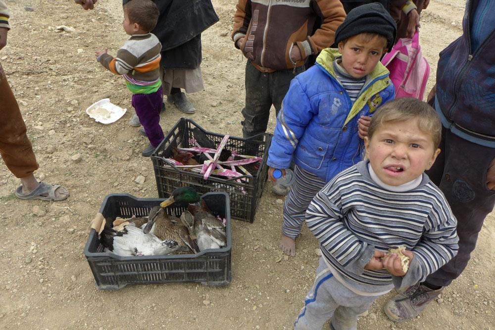 Iraq: Hàng nghìn người dân tiếp tục chạy trốn khỏi Mosul do bạo lực