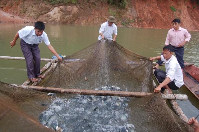 Sơn La: Phát huy vai trò hợp tác xã kiểu mới trong phát triển nông nghiệp, nông thôn
