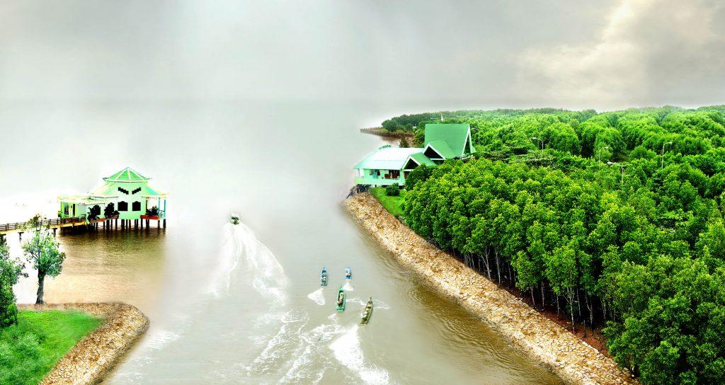 Cà Mau quy hoạch phát triển diện tích rừng đến năm 2020