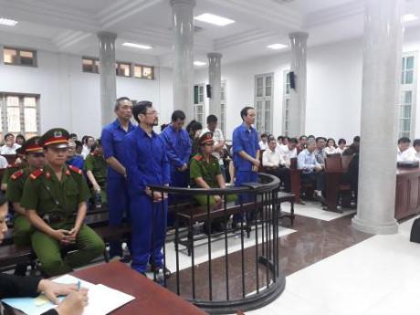 Phạt tù 11 bị cáo trong vụ lập khống dự án trồng rừng, chiếm đoạt hơn 863 tỷ đồng