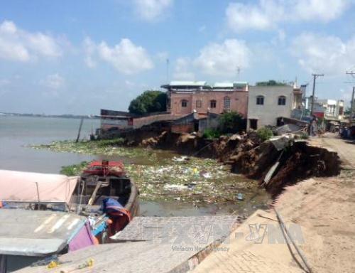 Sạt lở nghiêm trọng làm sập 14 căn nhà tại An Giang