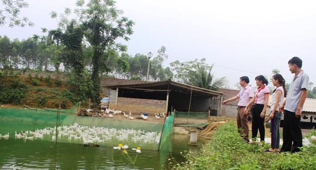 Vốn tín dụng nơi vùng Trung du miền núi Phú Thọ