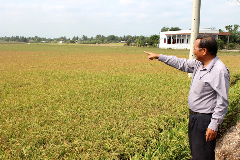 Tích tụ đất đai phải bảo đảm tăng thu nhập cho người nông dân