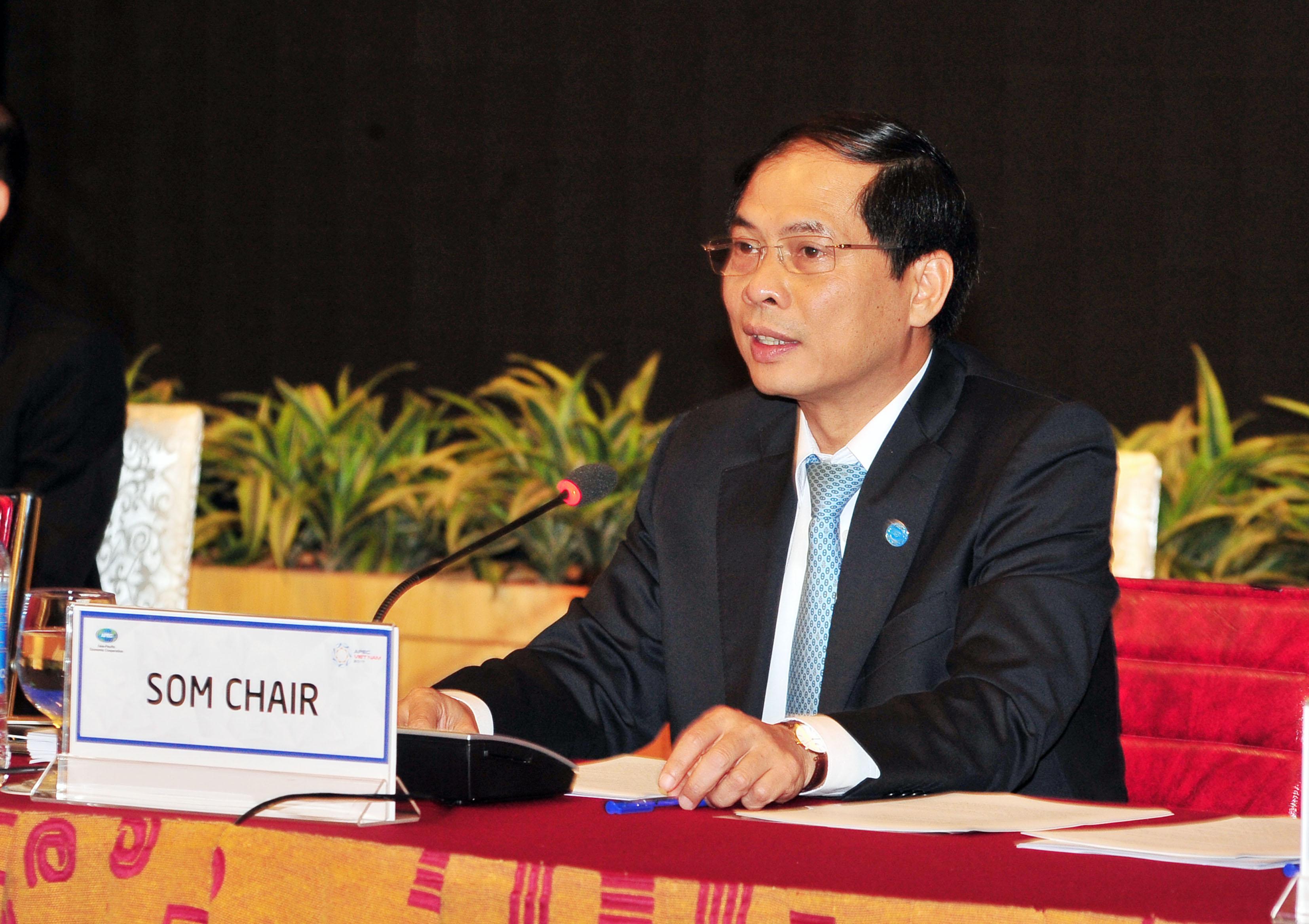 Khai mạc Hội nghị quan chức cấp cao APEC lần thứ 2 (SOM 2)