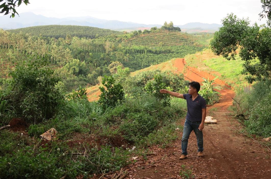 Đắk Nông kỷ luật hàng loạt cán bộ liên quan đến việc cấp sổ đỏ trên đất lâm nghiệp