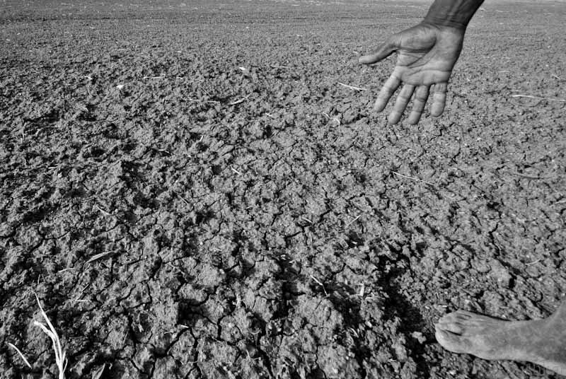 Nam Phi đối mặt với thảm họa hạn hán khủng khiếp nhất trong hơn 100 năm