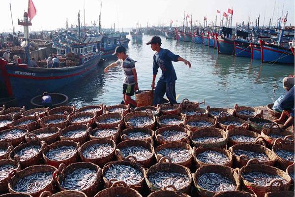 Nghệ An đẩy nhanh tốc độ tăng trưởng kinh tế vùng biển