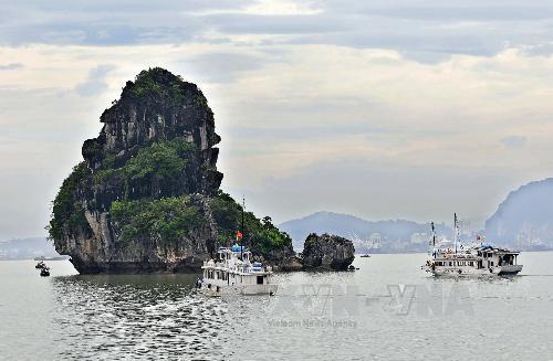 Bảo tồn và phát huy giá trị di sản thiên nhiên thế giới vịnh Hạ Long