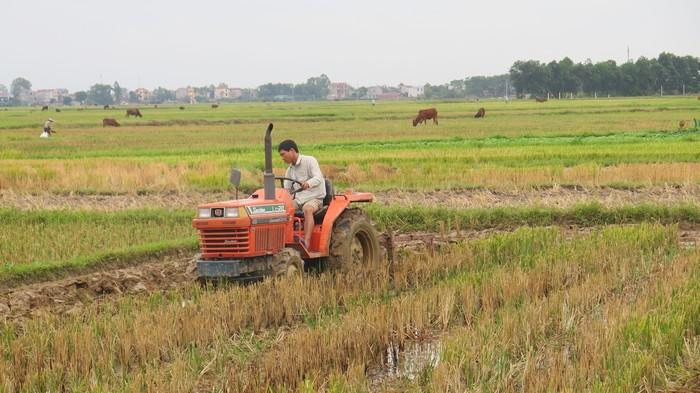 Xây dựng nông thôn mới ở Sóc Sơn: Hướng tới sự bền vững