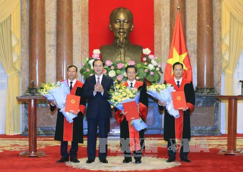 Chủ tịch nước trao quyết định bổ nhiệm Phó Chánh án, Thẩm phán Tòa án nhân dân tối cao
