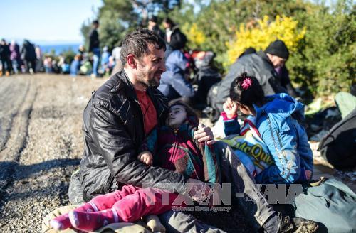Nhân Ngày thế giới vì người tị nạn