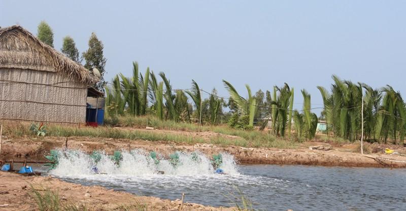 Tăng cường quản lý nuôi trồng thủy sản trong điều kiện thời tiết nắng nóng