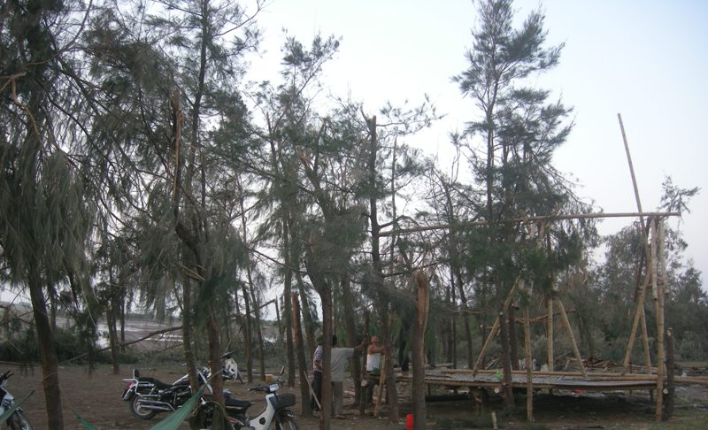WB hỗ trợ Việt Nam 300 triệu USD phát triển giao thông và bảo vệ rừng ven biển