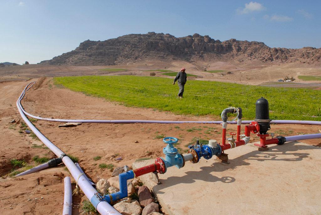 Liên hợp quốc kêu gọi ngăn chặn sa mạc hóa để xây dựng một tương lai bền vững