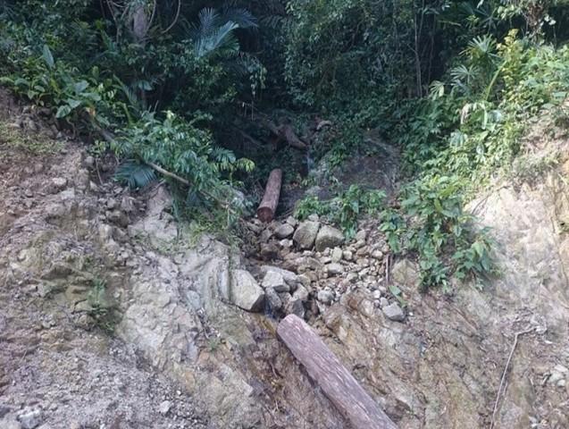 Thừa Thiên Huế: Kiểm tra, xử lý tình trạng khai thác gỗ trái phép tại rừng đặc dụng