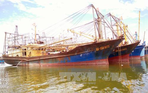 Thực hiện nghiêm Nghị định 67 về đóng mới, nâng cấp tàu cá
