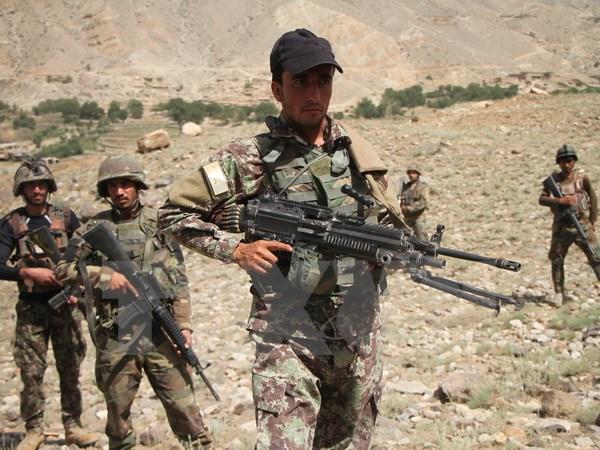 Lầu Năm Góc: Afghanistan đang phát triển lộ trình mới với Taliban