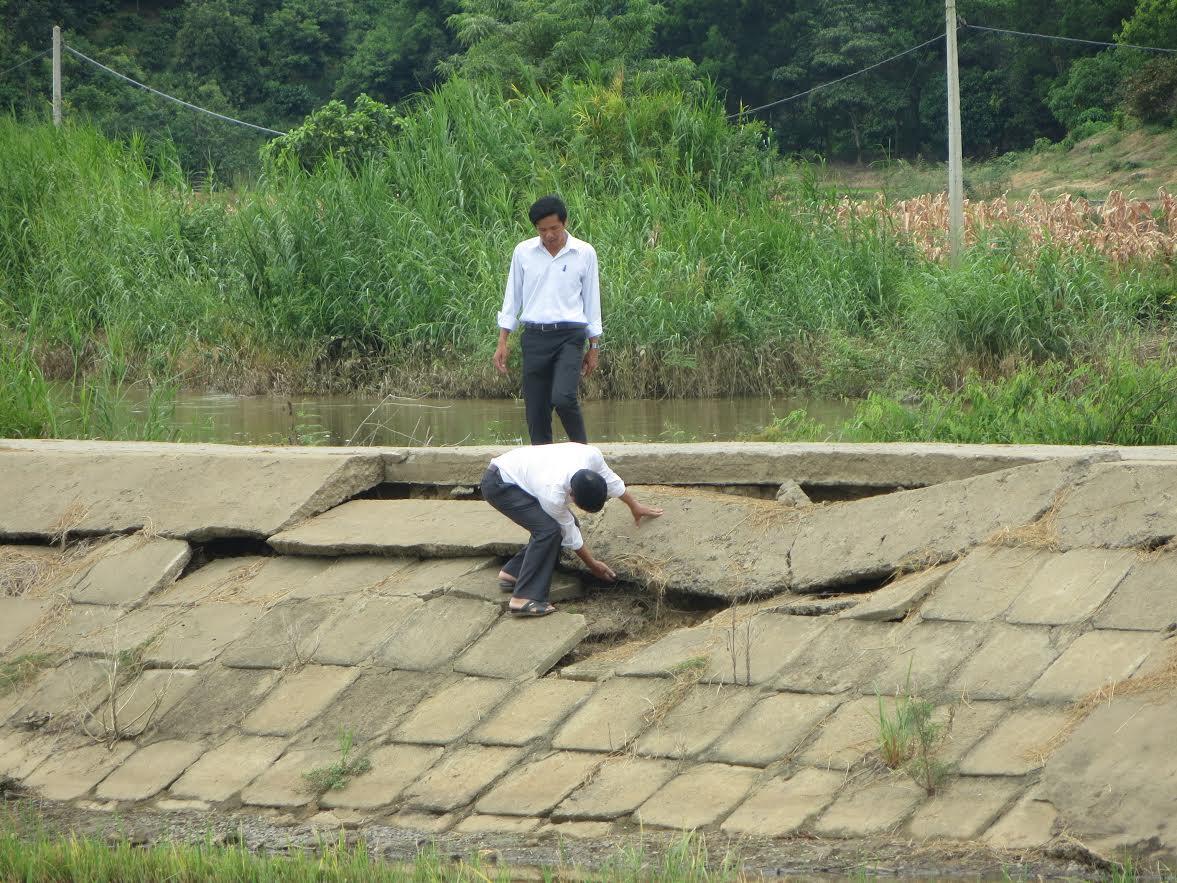 Đê bao chống lũ Quảng Điền (Đắk Lắk) đang bị sạt lở nghiêm trọng