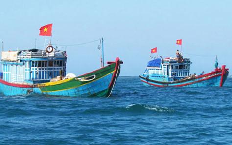 Ngư dân vươn khơi, bám biển có hiệu quả