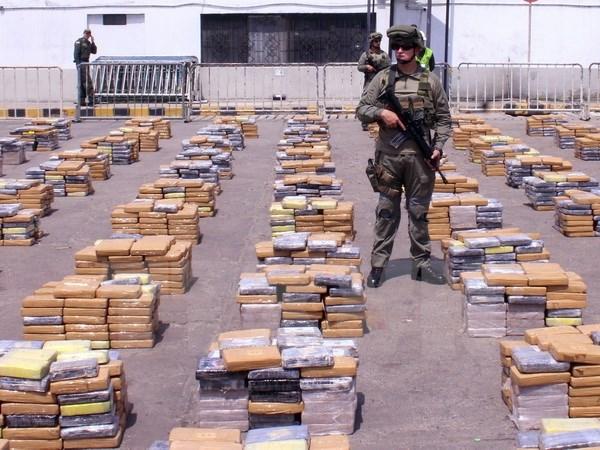 Châu Phi trở thành trạm trung chuyển ma túy mới sang châu Âu