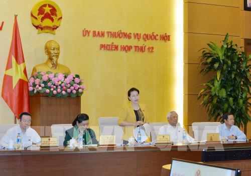Phân công chuẩn bị phiên họp của Uỷ ban Thường vụ Quốc hội